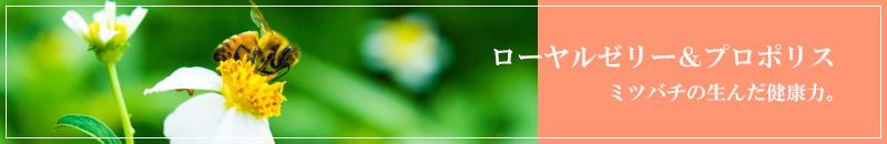 ローヤルゼリー&プロポリス。ミツバチの育んだ健康力